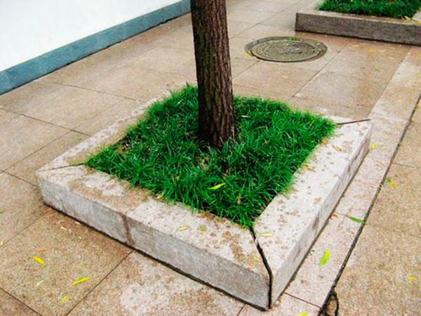 花岗岩树围石